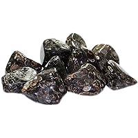 budawi® - Trommelstein Turitellaachat 2 - 3 cm groß, Edelstein Schneckenachat getrommelt preisvergleich bei billige-tabletten.eu
