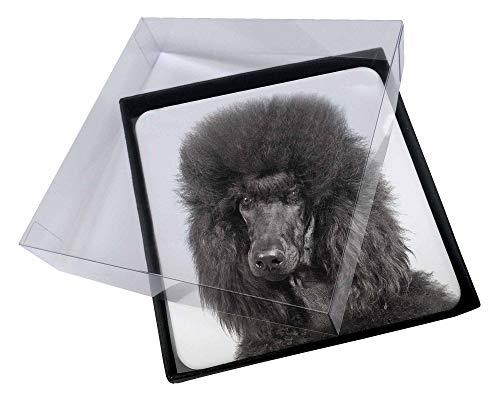 Advanta - Coaster Set 4X Schwarzer Pudel Hund Bild Setzer gesetzt -