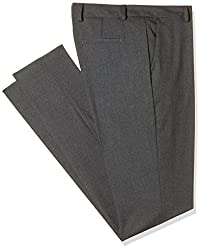 Allen Solly Womens Straight Pants (AWTF318F000122_Grey_66)