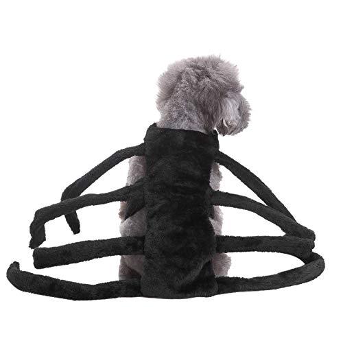 (MCYs Lustiges Halloween-Kostüm für Hunde und Katzen, Spinnen-Design, Gruselrequisite, Horror-Party, Bösewicht und Terror Tiere Kostüm Outfit)