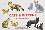 Cat Games Review and Comparison