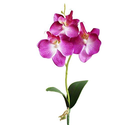 Sunday Wohnaccessoires & Deko Kunstblumen Künstliche Triple Head Künstliche Schmetterling Orchidee Seide Blume Startseite Hochzeit Dekoration 1 pc hat 3 Blumen (Lila)