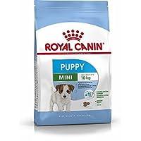 Royal Canin Mini Junior, 1er Pack (1 x 8 kg)
