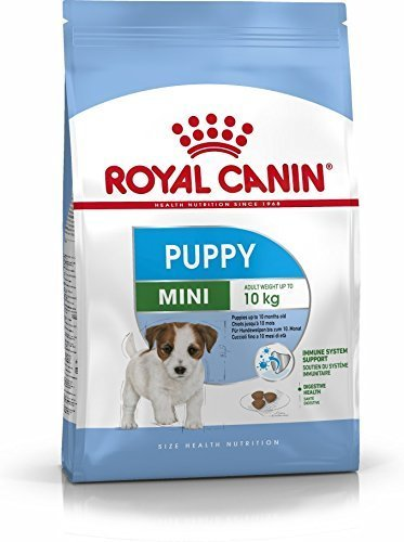 Royal canin - rc mini junior - kg. 8