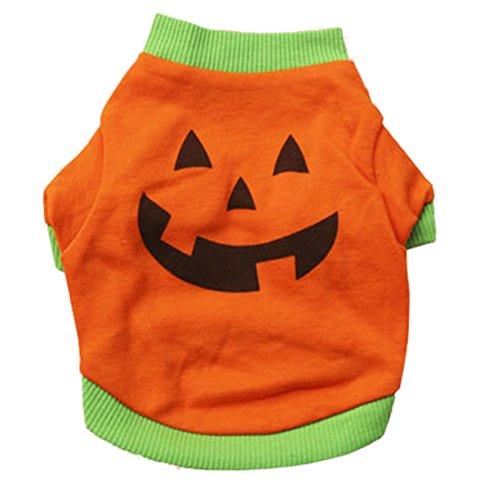 alloween Kuerbis Logo Peruecke Pet Costume Kostuem, s,orange (S Blends Halloween)