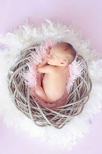 Kuschelnest und Märchenschlaf: Durchschlafen im ersten Lebensjahr: Wie können Eltern und Babys bis zum 1. Lebensjahr des Kindes am besten durchschlafen?