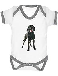 3d7c4298354424 Schwarzer Labrador Hund Bild Baby Strampler Body weiß mit heather grau Rand