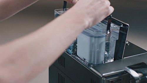 41r47QMzUFL - Philips CA6903/22 pieza y accesorio para cafetera Filtro de agua - Filtro de café (Filtro de agua, De plástico, Suiza, 2 pieza(s))