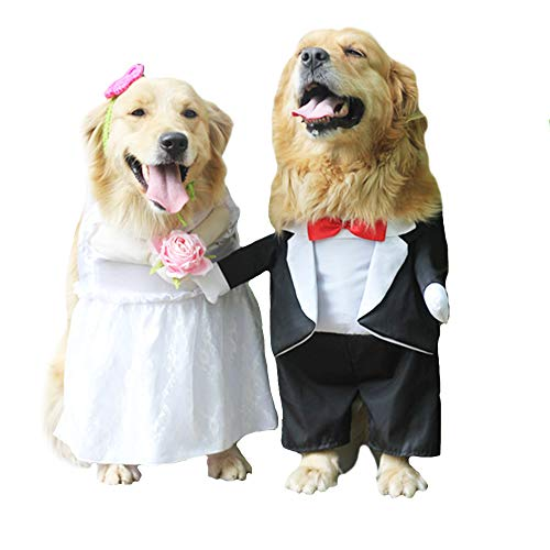 FLAdorepet Hundekostüm für Hochzeit, Smoking für große und mittelgroße Hunde, lustiges Brautkostüm für Golden Retriever Bulldogge, Foto-Requisiten, M(Suit for pet Between 11-25Lbs), Smoking (Hunde Elf Kostüm Für)