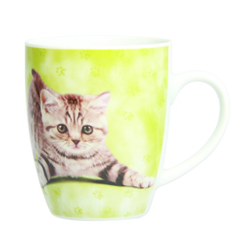 Novastyl 5084502 Lot de 6 Tasses Mini Cats Porcelaine Multicolore 40 cl