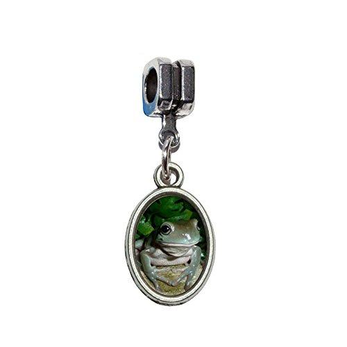 Italienisches europäischen Euro-Stil Armband Charm Bead–für Pandora, Biagi, Troll, Chamilla, andere (Baum Frosch Kostüme)