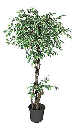 Decovego Ficus Benjamin Birkenfeige Kunstpflanze Kunstbaum Künstliche Pflanze Weiß Weiss mit Echtholz 160cm