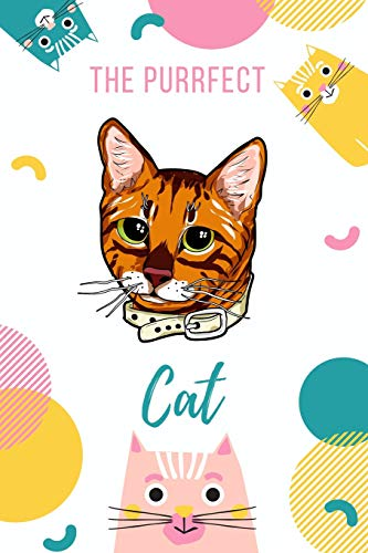 The Purrfect Cat: Toyger Cat -