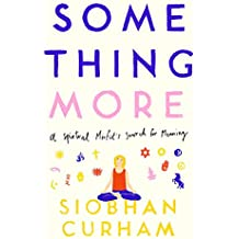 Something More: A Spiritual Misfit's Search for Meaning