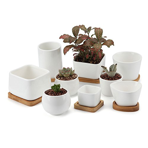 T4u 6.5/9cm Ceramic White Collection No.34 Sucuulent Plant Pot/cactus Plant Pot With Bamboo Tray Package 1 Pack Of 9