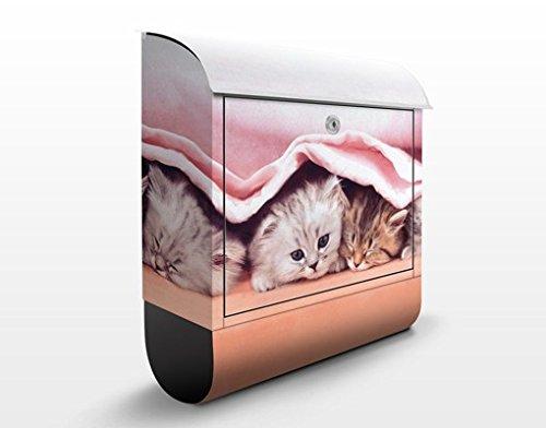 Design Briefkasten Sugar Sweet | Haustiere Katzen Kätzchen Süß Familie, Postkasten mit Zeitungsrolle, Wandbriefkasten, Mailbox, Letterbox, Briefkastenanlage, Dekorfolie