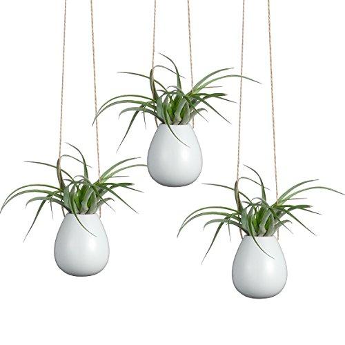 (newdreamworld 's Set of 2Mini Ei Form 5,1cm weiß Keramik pots-hanging Vase/innen Wall Pflanzgefäßen/Zimmer Decor)