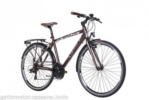 Bicicletta Passeggio