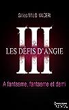 3 - Les défis d'Angie - A fantasme, fantasme et demi (HQN)