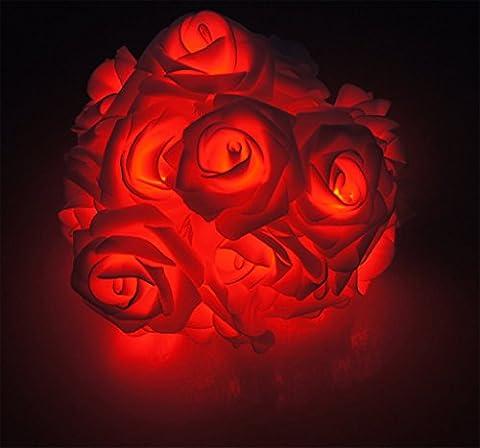 ERGEOB 3m 30er LED Rosen Lichterkette warmweiß batteriebetrieben Weihnachtsbeleuchtung rot