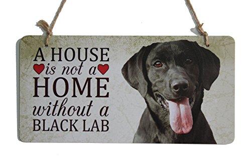 Black Lab Hund zeigt Haus ist nicht ein Haus ohne eine schwarze Platte Labor (5
