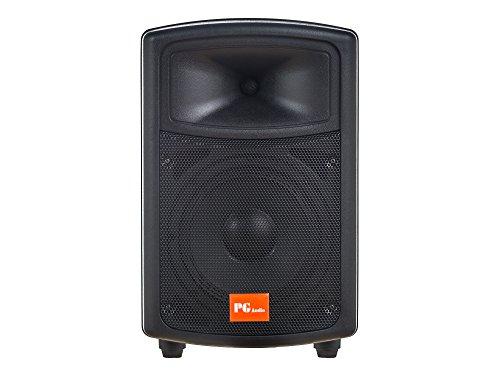 PG Audio PA 80Discoteca Fiesta PA Altavoz 8Pulgadas 20cm Bass 1Pieza Nuevo