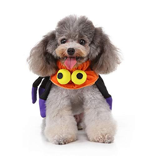 MYYXGS Hund Schal Hundebekleidung Haustier Weihnachten Liefert Kragen Halloween Band Ausschnitt Hund Weihnachten Hut LäTzchen