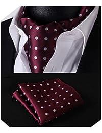 HISDERN Men's Check Polka Dot Floral Jacquard Woven Ascot Set