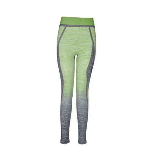 Longra Femmes Yoga Sports Aptitude élasticité pantalons (Vert, Gratuit Taille)
