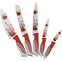 Acciaio inossidabile 5 pezzi Set di coltelli con la lama