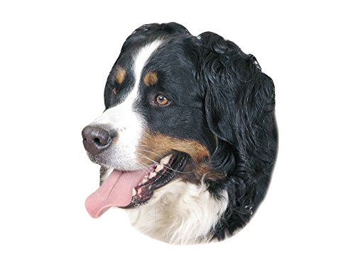 nobby-sticker-bernese-mountain-dog