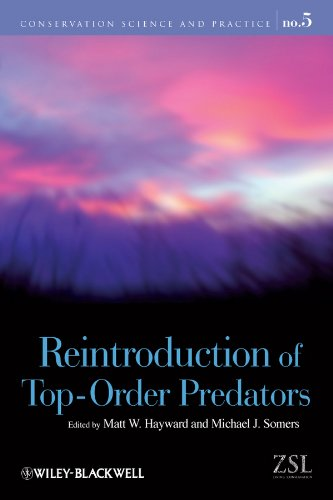 Reintroduction of Top-Order Predators (Conservation Science and Practice, Band 5) -
