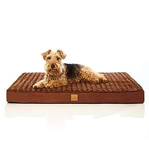 Pets&Partner Hundebett | Hundekissen | Oeko-TEX Zertifiziert | orthopädisch für mittel große und große Hunde L Braun