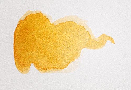 Clairefontaine 96356C Rolle Aquarellpapier (Fontaine, 1,5 m x 10 m, 300 g, satiniert, heiß gepresst, 100% Baumwolle, professionelle Qualität, ideal für Künstler) weiß