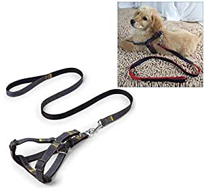 Lukzer Adjustable & Durable Denim Dog Harness/Puppy Collar Leash Perfect for Daily Training Walking Running (44 inch Long)