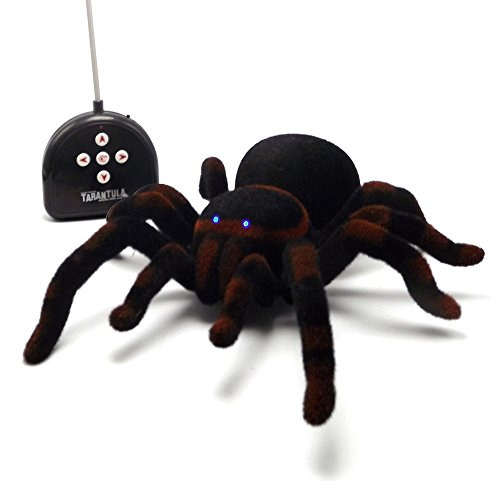 CH RC Spinne Tarantula hohe Simulations-Fernradiosteuer -Träger-Auto-elektrische Spielwaren (Spinne Tarantula)