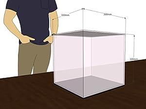Técnicas Láser- Urna De Metacrilato, Color Transparente/Base Espejo, 30x30x30cm (U.4.30X30X30/E