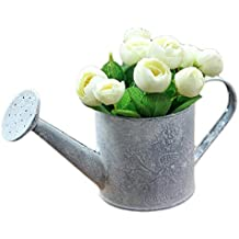 outflower Metal regadera flores jarrón para decoración del hogar