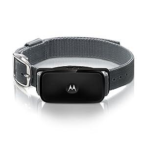 Motorola collier anti aboiement à ultrasons (sans choc) - BARK 200U - Noir