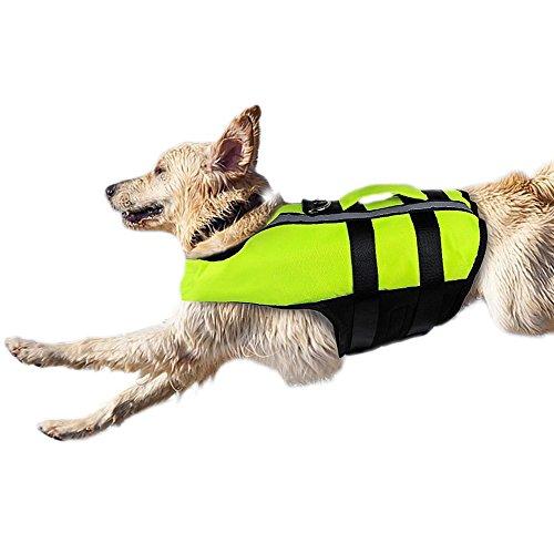 hwimmen Life Jacke für Hunde Rettungswesten, Badeanzug für kleine mittlere große Hunde, sichere und Reflektierende, reflektierend, Grün ()