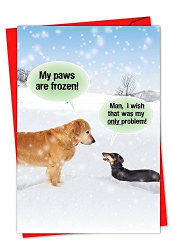 p5953My Pfoten, die Frozen Weihnachten 'Humorvolle Weihnachten Mitteilungskarten, das mit einem Bild von Kalten Pfoten und ein Chilly Hund; mit Umschlägen Box Set of 36 Christmas Cards (C5953XSG-B36)