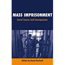 Mass Imprisonment: Social Causes and Consequences (English Edition)