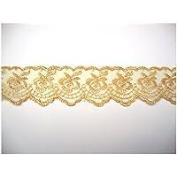 QHDZ Encantador Artesanía DIY Costura de Costura Apliques de Encaje Floral (Dorado) (Color : Golden, tamaño : 9M*4CM)