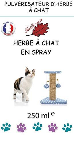 Katzenminze Spray. Anziehende Wirkung auf Katzen, 250 ml, mit Katzenminze
