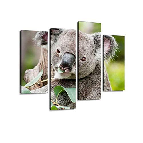 QUEENCE Leinwand »Eukalyptus
