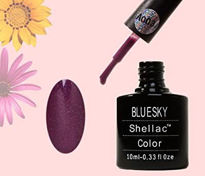 Bluesky UV LED Gel Soak Off Nail Polish, Plum