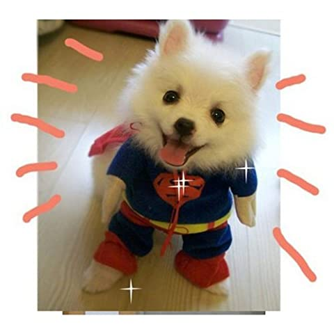Sanlise New Pet Cat Dog Puppy Cotton Clothes Costumes Superman