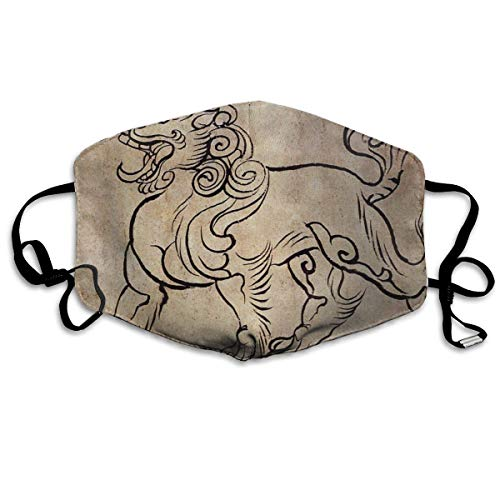 Vbnbvn Unisex Mundmaske,Wiederverwendbar Anti Staub Schutzhülle,Gesichtsmaske Chinese Lion Anti Pollution Washable Reusable Mouth Masks for Man - Womens Lion Kostüm