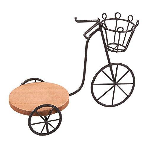 Planta artificial–Soporte para macetas, plantas suculentas soporte, hierro en maceta Planta Soporte de bicicleta para decoración de jardín, interior, exterior Planta de almacenamiento–8x 5,7x 3,7cm