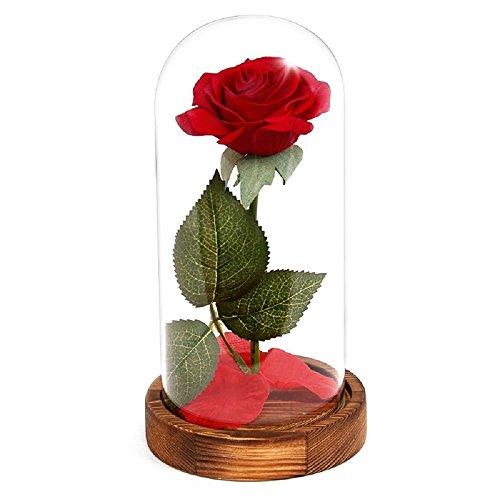 Xigeapg Eternal Rose Flower Rote Seide Rose und LED-Licht mit gefallenen Bluetenblaettern in Glaskuppel auf einer hoelzernen Basis Bestes Geschenk - - Dome Led-licht Weg